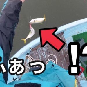 浜名湖のトップゲーム