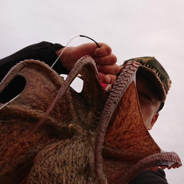 ㌔over…大型の🐙が釣れ始めたか?🤒